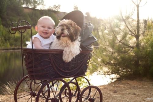 buitenshoot van baby en huisdier in vintage kinderwagen