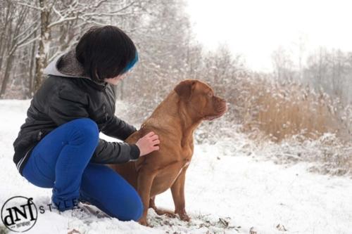 buitenshoot van jongen met hond in de sneeuw