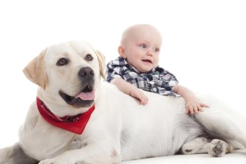babyshoot met de hond in de fotostudio